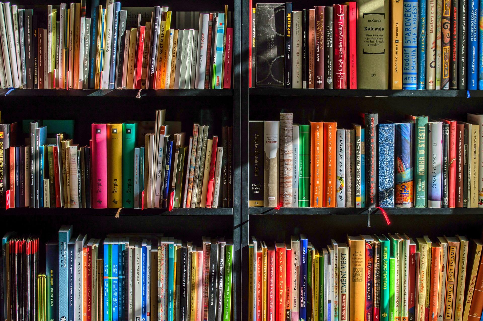 どれを選べばいい?自己分析本の選び方を解説!おすすめの本も紹介